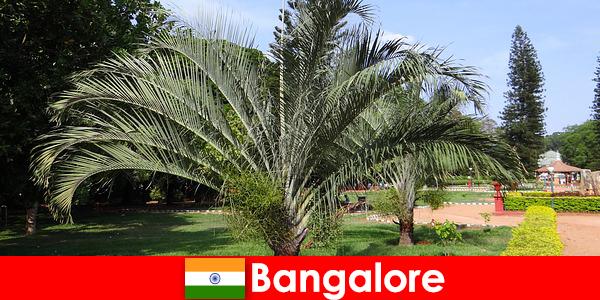 El clima agradable de Bangalore durante todo el año vale la pena un viaje para todos los extranjeros