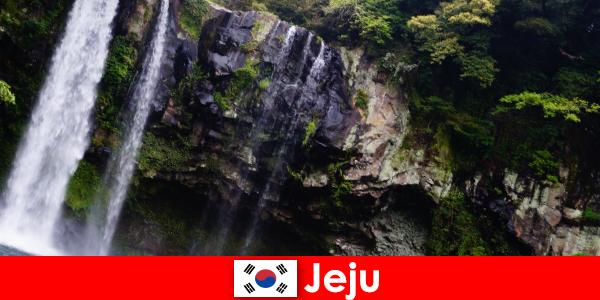 Jeju en Corea del Sur, la isla volcánica subtropical con bosques impresionantes para los extranjeros